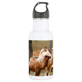 Mother Camel and Baby Animal Photo Desert Animal Stainless Steel Water Bottle