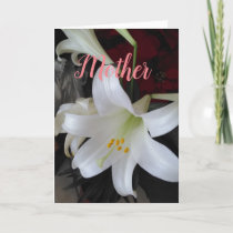 Mother Card