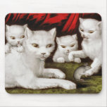 Mother cat and kittens with mouse mouse pads
