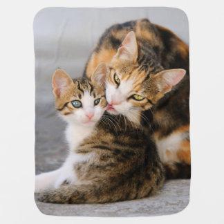 Mother cat loves cute kitten baby receiving blanket