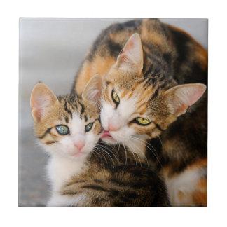 Mother Cat Loves Cute Kitten, Ceramic Ceramic Tile