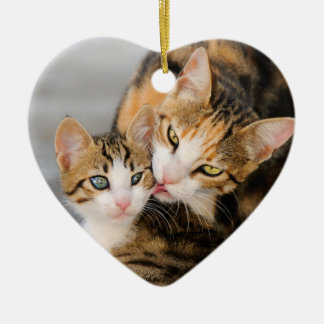 Mother Cat Loves Cute Kitten hang Decor Ceramic Ornament