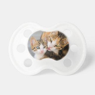 Mother cat loves cute kitten pacifier