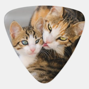 Mother Cat Loves Cute Kitten  Plectrum by Kathom_Photo at Zazzle