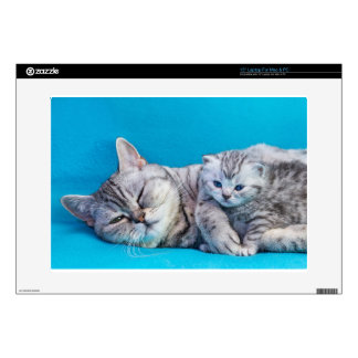 """Mother cat lying with kitten on blue garments 15"""" laptop skins"""