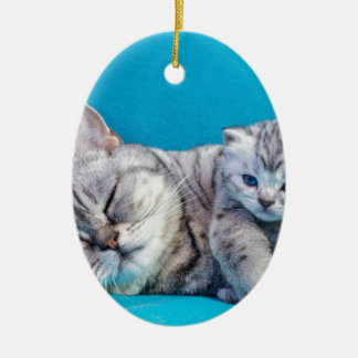 Mother cat lying with kitten on blue garments ceramic ornament