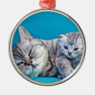 Mother cat lying with kitten on blue garments metal ornament