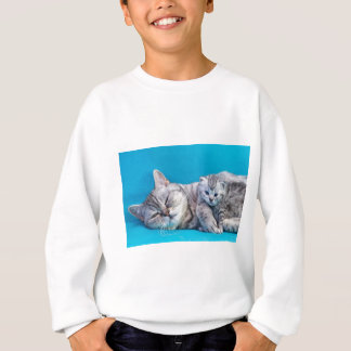 Mother cat lying with kitten on blue garments sweatshirt