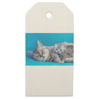 Mother cat lying with kitten on blue garments wooden gift tags