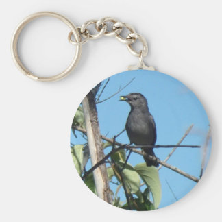 Mother Catbird Gathers Berries to her Feed Babies Keychain
