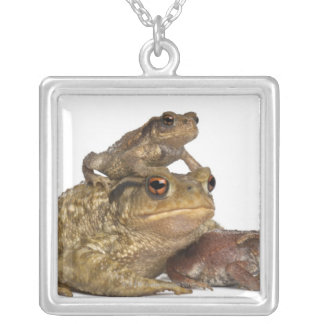 mother Common toad and her babies - bufo bufo Silver Plated Necklace
