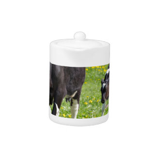 Mother cow and calf in meadow with yellow flowers teapot