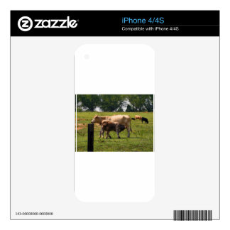 Mother Cow Nursing Baby Skins For iPhone 4S