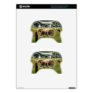 Mother Cow Nursing Baby Xbox 360 Controller Skins