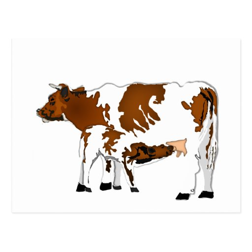 Mother Cow with Calf Post Cards
