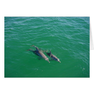 Mother Dolphin Swimming With Her Two Off-Springs Greeting Card
