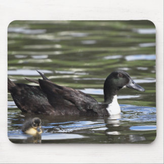 Mother Duck and Duckling Mousemat Mouse Pad