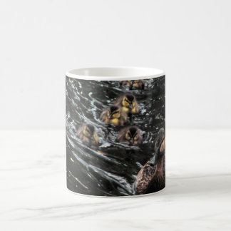 Mother Duck and Ducklings Go for a swim Coffee Mug