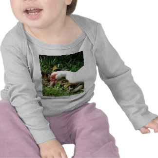 Mother Duck said Quack Quack Quack Tee Shirts