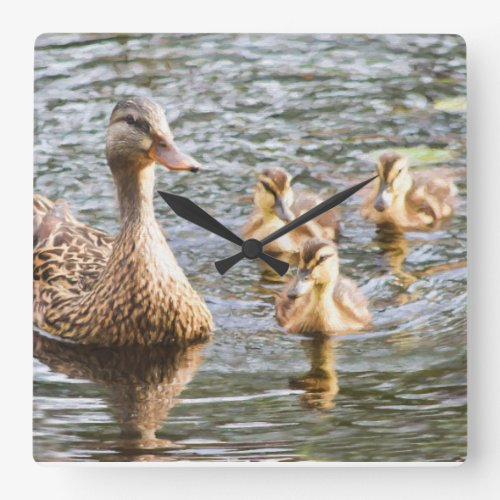 Mother Duck with Baby Ducks Square Wall Clock