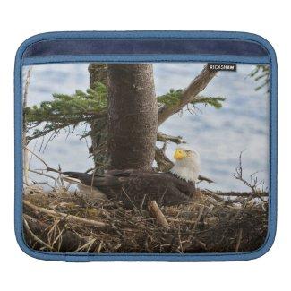 Mother Eagle iPad sleeve