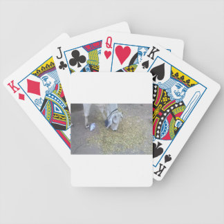 Mother Earth Cow Taking Grass Bicycle Playing Cards