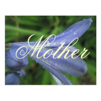 Mother Elegant Blue Flower Postcard