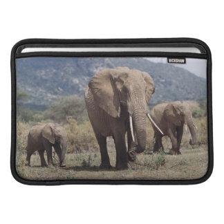 Mother elephant walking with elephant calf MacBook sleeve