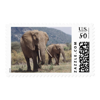 Mother elephant walking with elephant calf postage