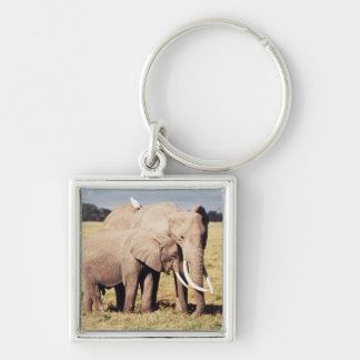 Mother elephant with young keychain