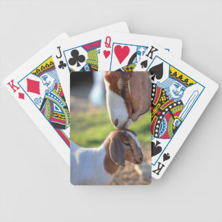 Mother goat kissing her baby on head. bicycle playing cards