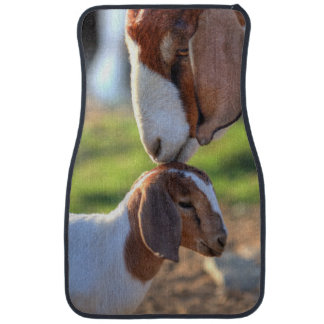Mother goat kissing her baby on head. car mat