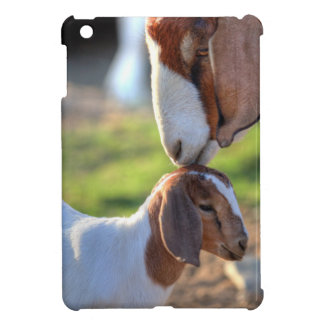Mother goat kissing her baby on head. cover for the iPad mini
