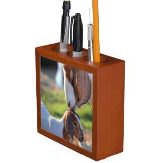 Mother goat kissing her baby on head. desk organizer