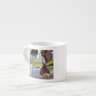 Mother goat kissing her baby on head. espresso cup