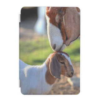 Mother goat kissing her baby on head. iPad mini cover