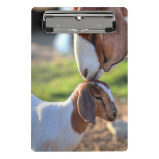 Mother goat kissing her baby on head. mini clipboard