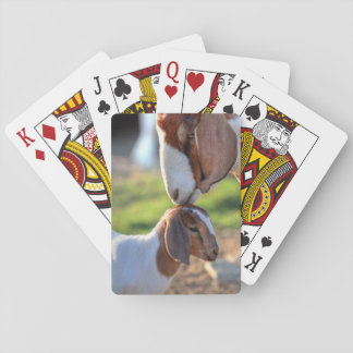 Mother goat kissing her baby on head. playing cards
