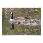 Mother Goose and Baby Geese Photo Invites