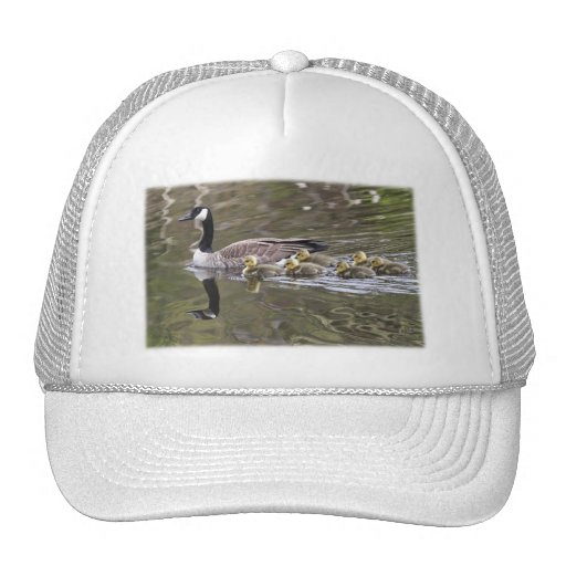 Mother Goose and Baby Geese Photo Mesh Hat