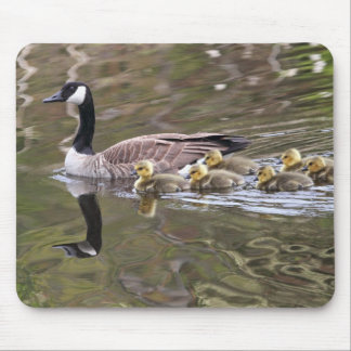 Mother Goose and Baby Geese Photo Mouse Pad