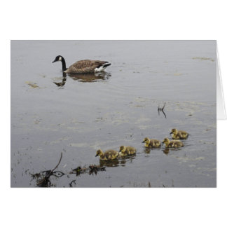Mother Goose and Goslings Mother's Day card