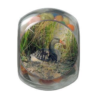 Mother Goose Glass Jar