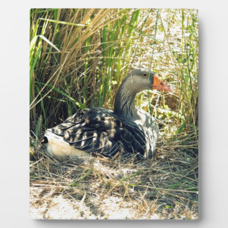 Mother Goose Plaque
