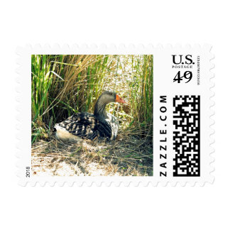 Mother Goose Stamp