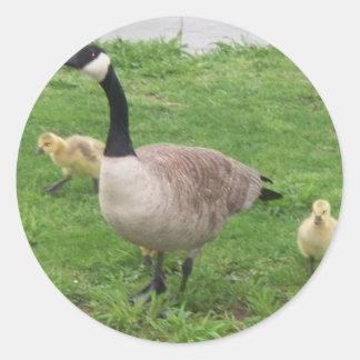 Mother Goose Round Sticker