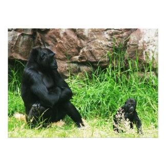 Mother Gorilla Watching Her 8 Month Old Baby Boy Art Photo