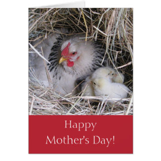 Mother Hen with New Chicks Greeting Card