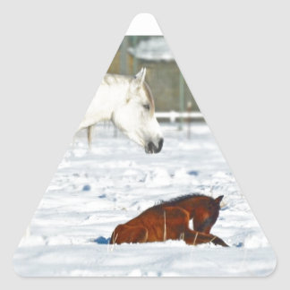 Mother Horse and Baby in Snow Triangle Sticker