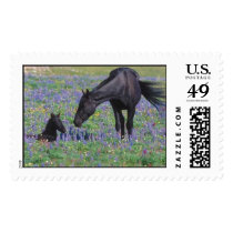 Mother Horse Postage Stamps